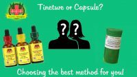 Tincture or Capsule?