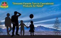 Stressed parents turn to cannabinoid products for relief, Stressed Parents & Cannabinoid Products for Relief Sleep Benefits Cannabinoid Products Cannabinoid Products Aid Anxiety & Stress Related Inflammation