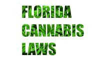 florida cannabis laws