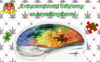 Clinical Endocannabinoid Deficiency Syndrome