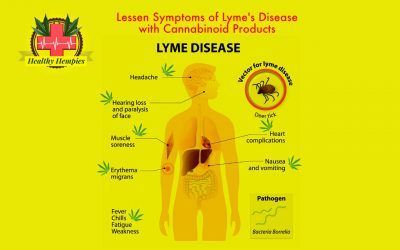 Lessen Symptoms of Lyme's Disease, Cannabinoid Products, Skin Soothing Benefits, Fatigue Fighting Cannabinoids, Cannabinoids Aid Arthritis Pain Inflammation Lessen Symptoms of Lyme's Disease with Cannabinoid Products