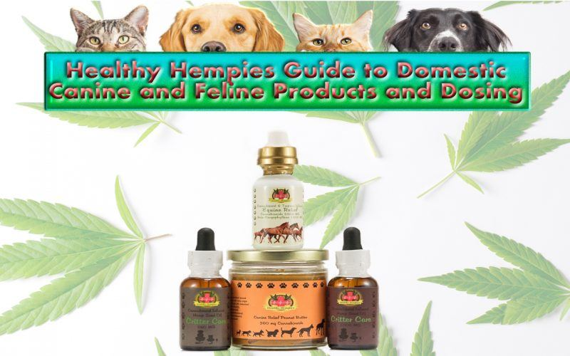 Healthy Hempies Guide to Domestic Canine & Feline Products and Dosing, Healthy Hempies Critter Care Oil Healthy Hempies Canine Relief Peanut Butter, Dosing Healthy hempies guide to domestic canine and feline products and dosing