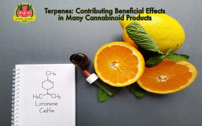 Terpenes: Contributing Beneficial Effects in Many Cannabinoid Products!