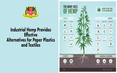 Industrial Hemp Provides Alternatives for Paper Plastics & Textiles, Hemp Paper Replaces Timber-based Paper Products, Hemp Fabrics