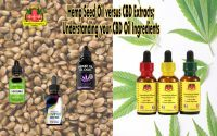 Hemp Seed Oil versus CBD Extracts; Understanding CBD Oil Ingredients, Hemp Seed Oil, CBD Extracts, Cannabinoids, Milligram