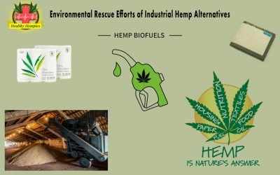 Environmental Rescue Efforts of Industrial Hemp Alternatives, Environmental, Hemp Biodiesel, Hemp Derived Fuel and Energy Hemp Phytoremediation